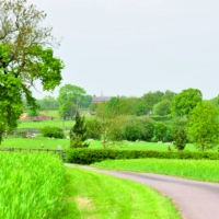 Lush green farm land scene with road bearing left